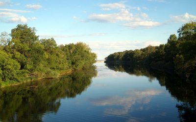 Pentingnya Rehabilitasi Daerah Aliran Sungai
