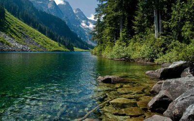 Mengenal Daerah Aliran Sungai dan Memilih Kontraktor Rehabilitasi Daerah Aliran Sungai